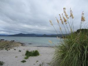 vakantie dec 2012 east cape 152